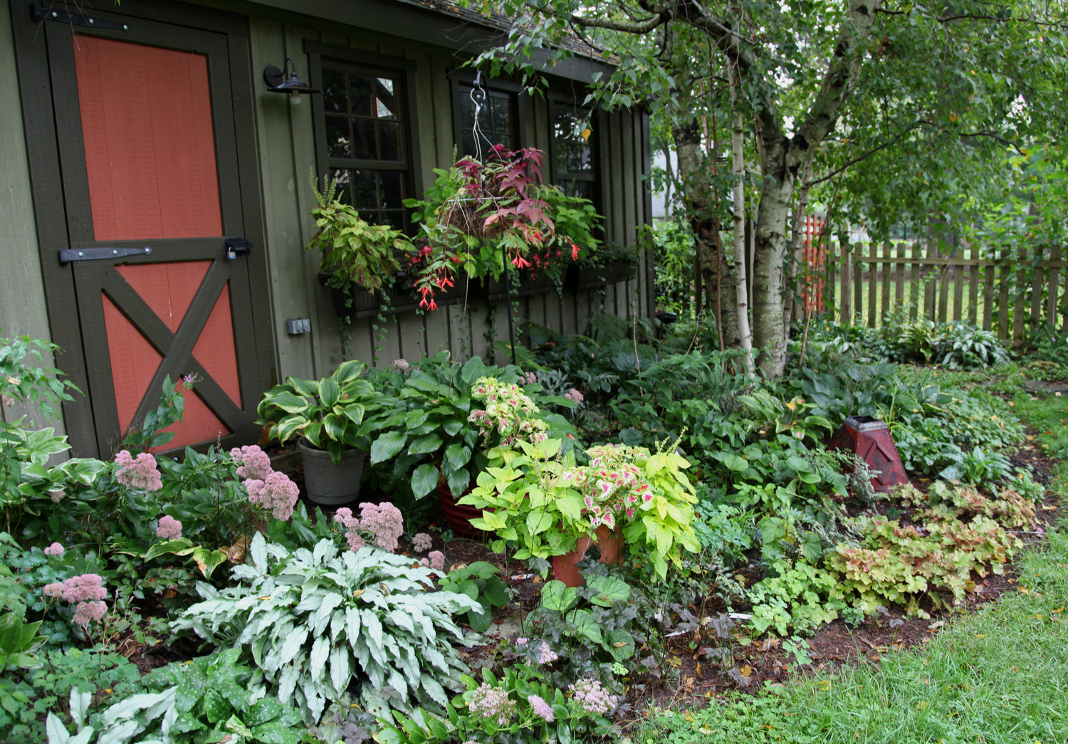 Garden Design With Shrubs : New plants from the scott arboretum plant sale carolyn s shade