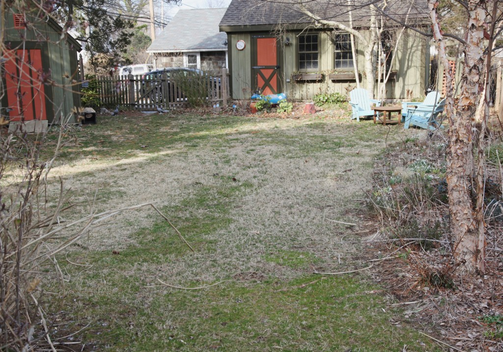 yard-earlyspring